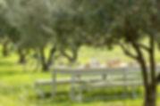 garden_3.jpg