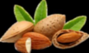 Almonds transparent final.PNG