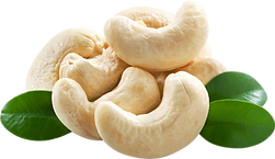 Cashews 03 transparent.png