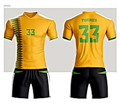 Spain Soccer Jersey.jpg