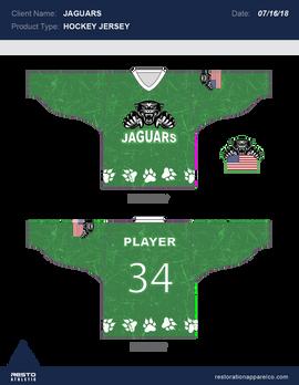 Jaguars Hockey.png