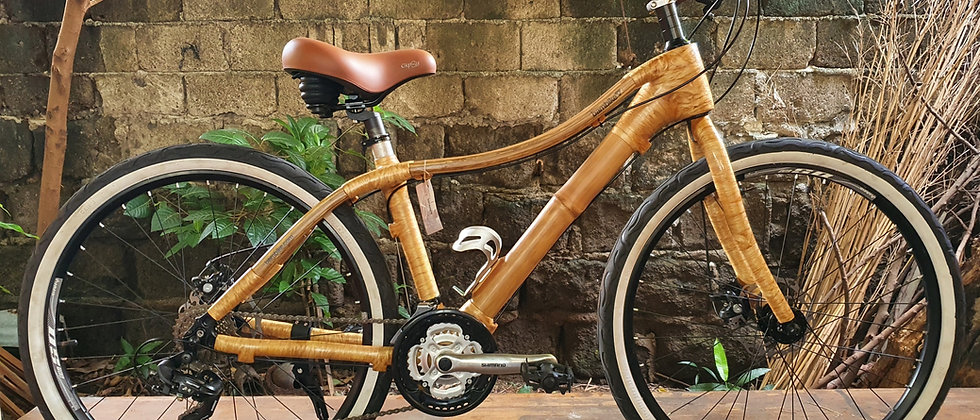 Victoria 2.0 - City Bike model