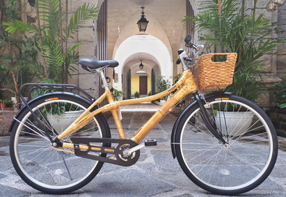 (New Model) Victoria 2.1 City Bike