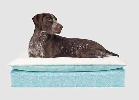 Canada Pooch Teal Pillow Topper bed O/S