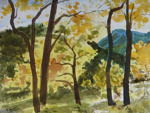 Fall in the Jemez