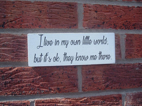 I live in my own little world plaque