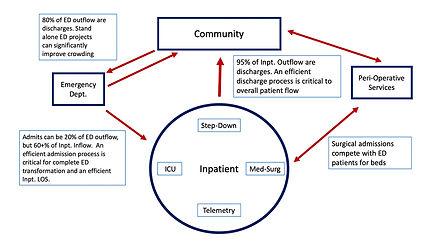 Queue Management Patient Flower Schematic