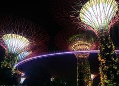 Travel -Singapore.JPG