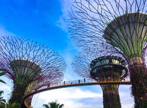 Travel - Singapore.jpeg