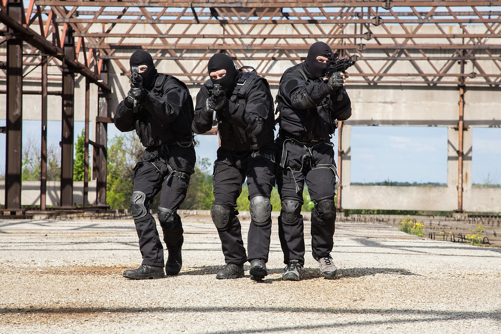 The Trump visit has seen the SAS brought in to protect the Queen's privates.