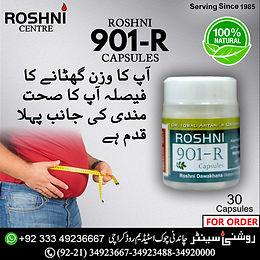 Roshni 901-R