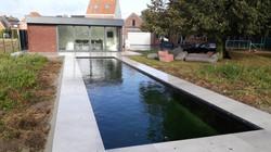 pool + poolhouse