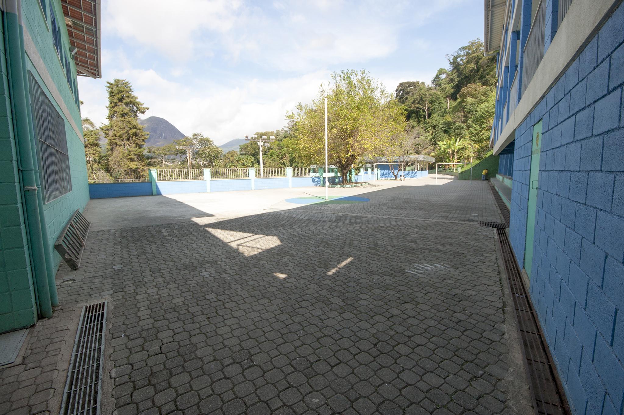 Miosótis | Nova Friburgo