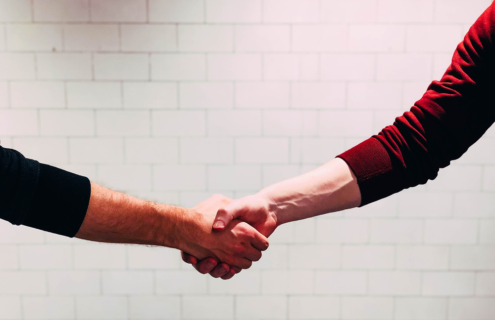 Two colleagues giving a firm handshake