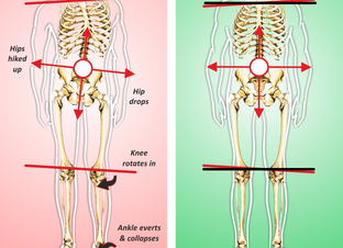 Comparing Structural Integration to Massage and Chiropractic