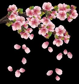 Pink falling petals.png
