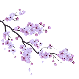 Purple cherry blossom.png