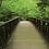 Thumbnail: Pont au Parc National des Great Smoky Mountains