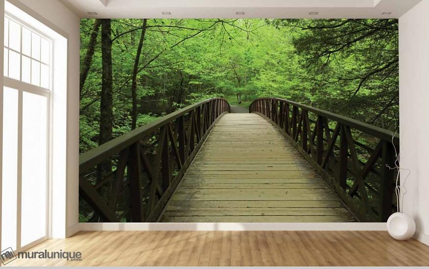 Pont au Parc National des Great Smoky Mountains