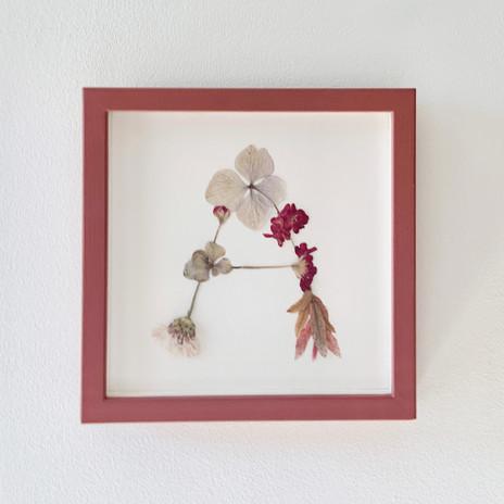 A by Maison Floralia