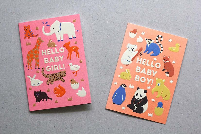 Hello Baby Girl! / Boy!