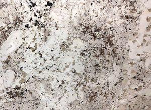 Alaska-White-Granite-CloseUpl.jpg