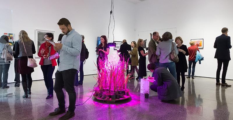 Offerings, installation shot. Photo courtesy of Sait Akerman, Arts Diary NZ.