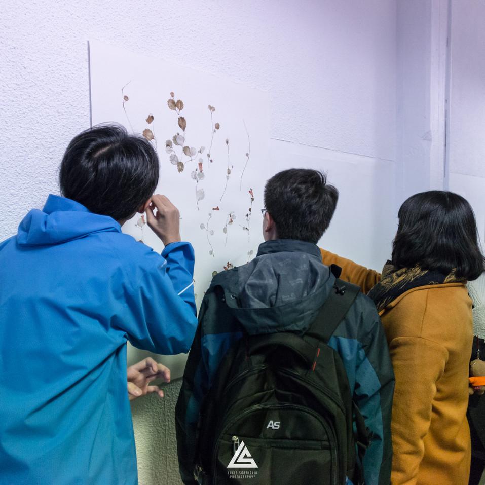 Installation image by Lucie Smergilio.