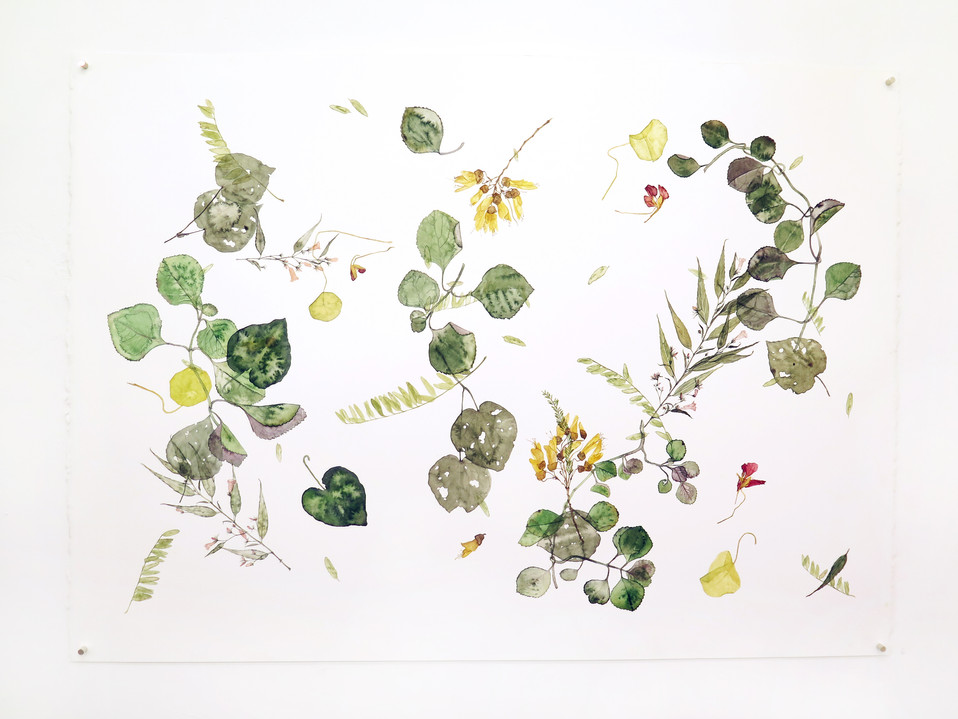 Environ #6 (2018) Watercolour on paper, 1080 x 560mm.