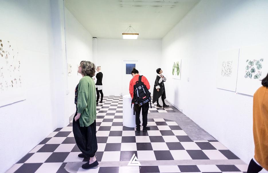 Kohl Tyler-Dunshea Exhibition Artist