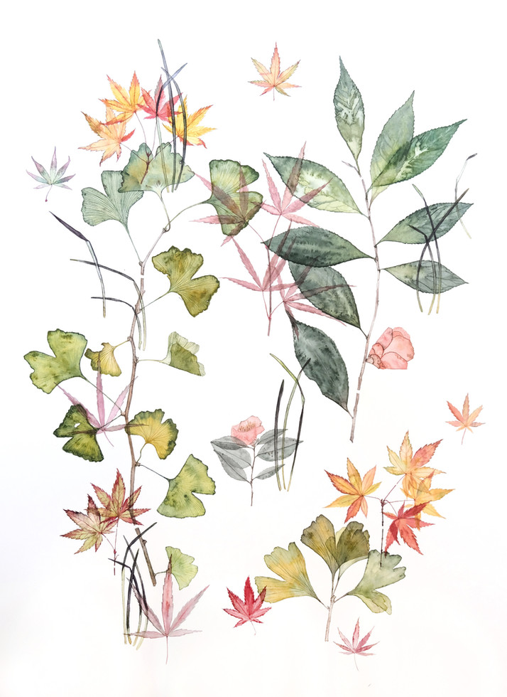 Whatipu House (2018) Watercolour on paper, 680 x 1050mm.