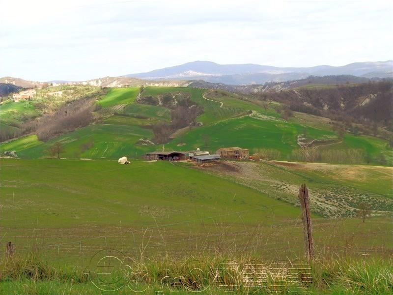 Azienda agraria di 137 ettari adibita ad allevament
