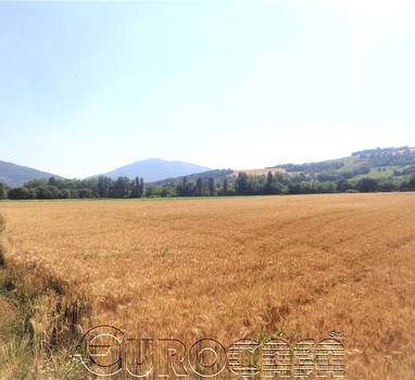 Agricutural holding of 35 hectares and farmhouse with two apartments