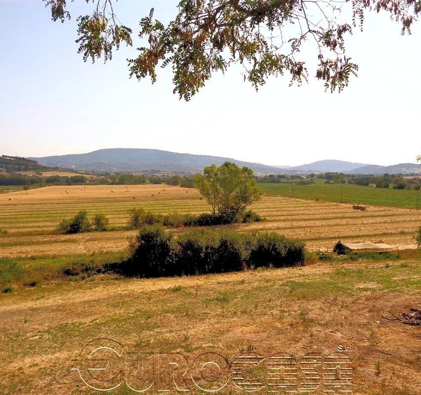 Azienda di 166 ettari con vigna e seminativo irriguo