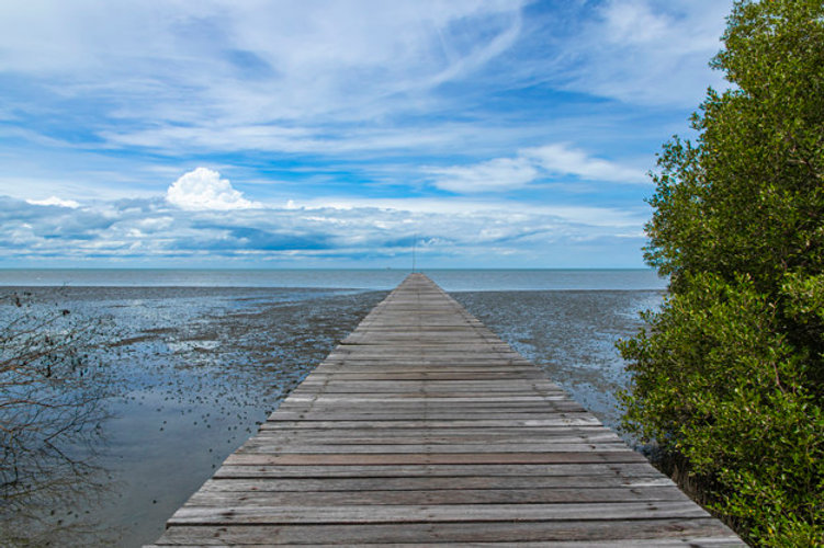 long-chemin-bois-au-bout-plage_117304-11