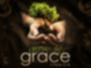 grow-in-grace-2-peter-3-18.jpg