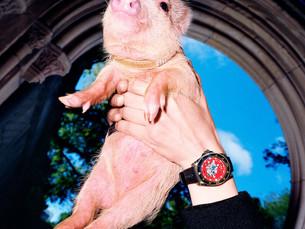 The Year Of Pig 己亥猪年腕表新品登场