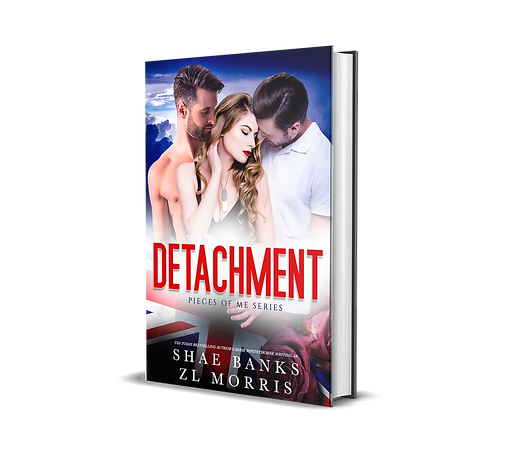 Detachment 3D.png