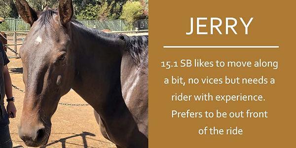 JERRY final.JPG