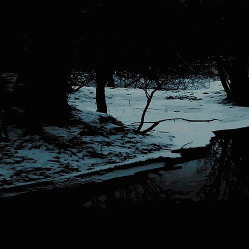 "Forest Mysticism / Krypta Nicestwa – Mirrors of Glaciated Earth  (7"")"