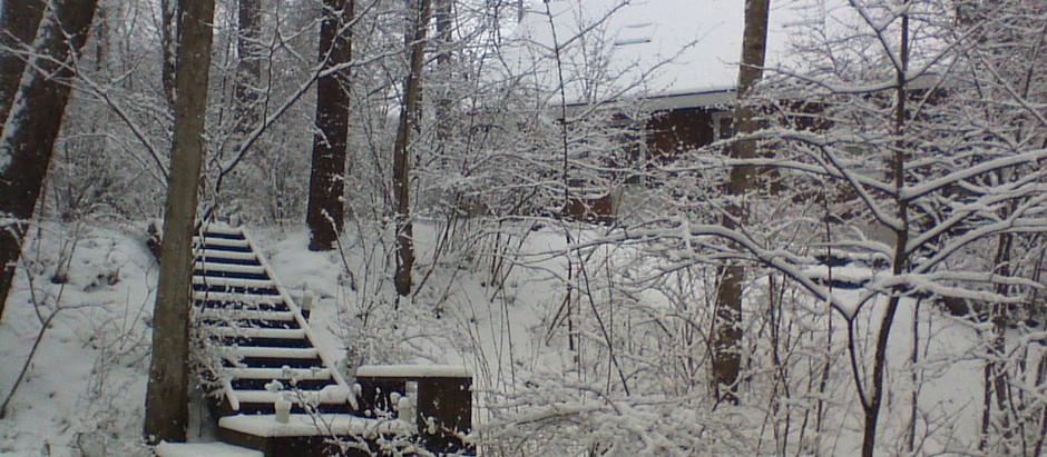 軽井沢便り 春の大雪