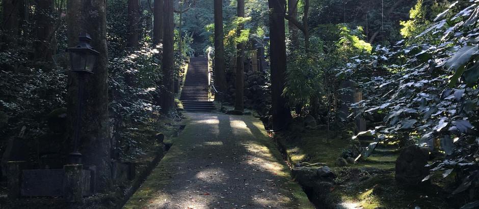 大地の再生 東慶寺へ