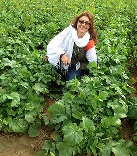 Mom in Field.jpg