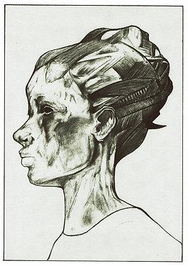 LEGENDARY PLAINS — 28 x 38 cm. Print