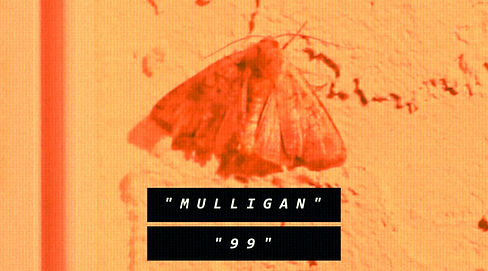 Mulligan 99 Thumbnail.jpeg
