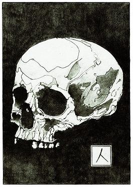 UNDULGE — 28 x 38 cm. Print
