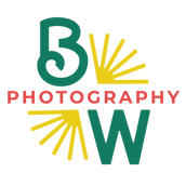 BWP_Submark_MultiColor.png