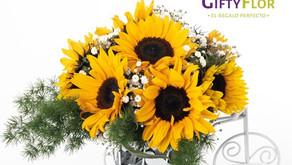 Cuidado de tu ramo de girasoles - Tips Giftyflor