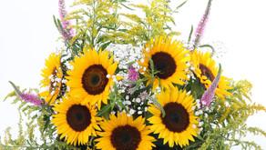 ¿Cómo saber cual tipo de flor regalar? - Tips Giftyflor
