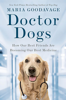 Cover of book Doctor Dogs with happy golden retriever wearing stethoscope